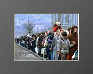 Flüchtlinge-567x410_(320_x_240)